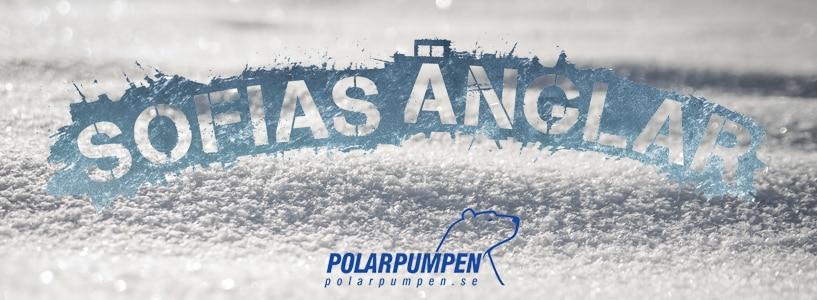 Polarpumpen