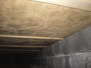 Avlägsna mögel i krypgrund med en krypgrundsavfuktare