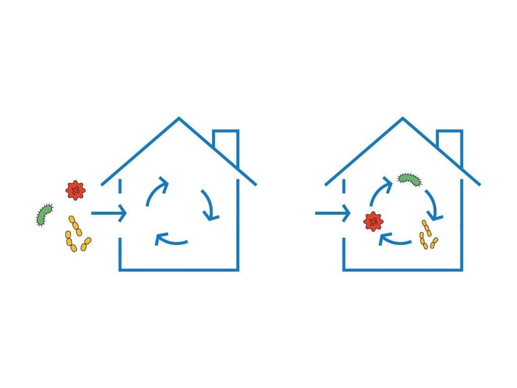 Luftrening behövs för att bli av med skadliga partikar inomhus